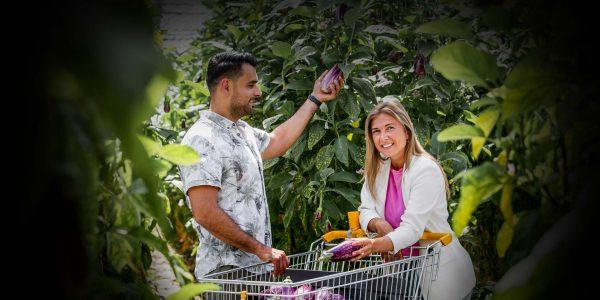 header-home-telers-aubergines